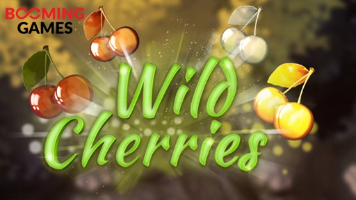 Casino 3D Slots Wild Cherries