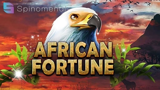 African Fortune