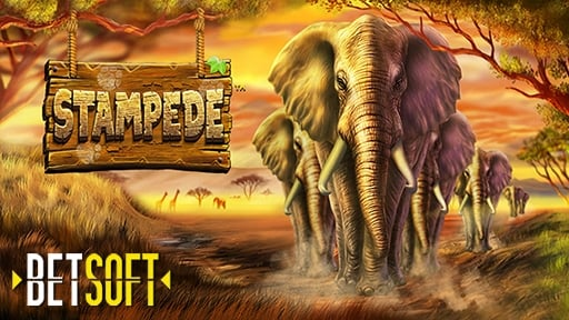 Play online casino Stampede