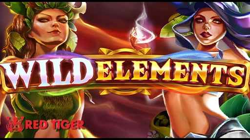 Play online Casino Wild Elements