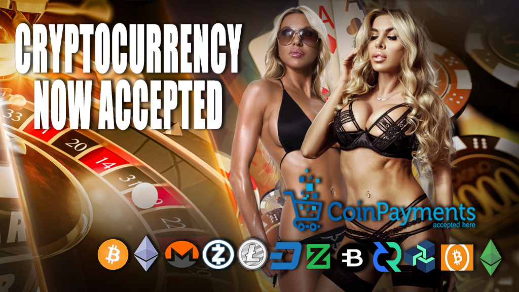 Playhub Casino online bitcoin casino | cryptocurrencies accepted